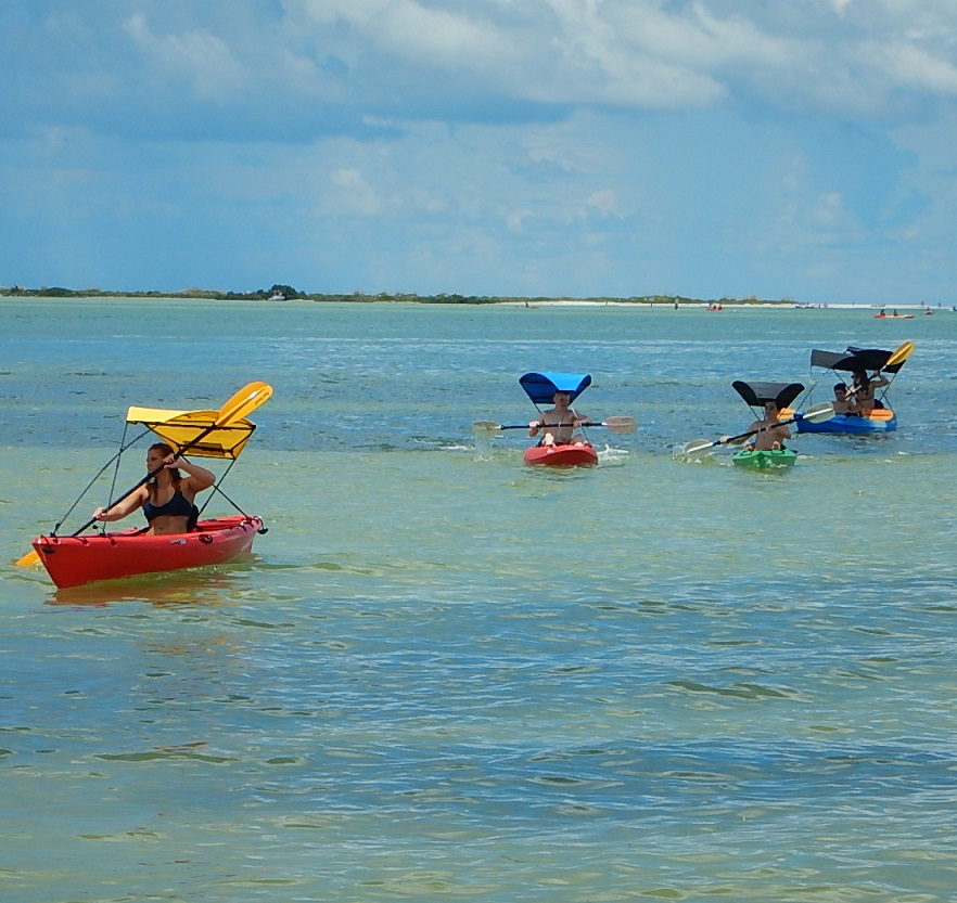 Kayak bimini top